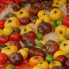Légumes et Potagers