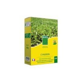 CYNODON 480 g