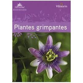 HORTICOLOR Les plantes grimpantes