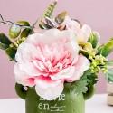 Autres fleurs en pots